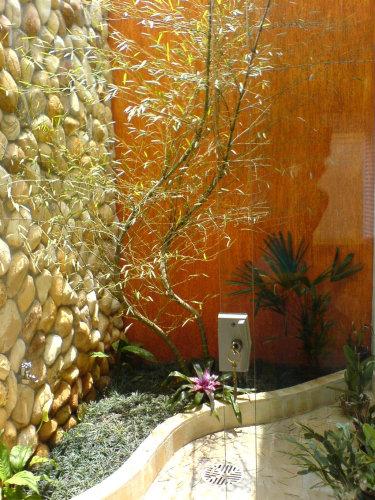 jardim (7)