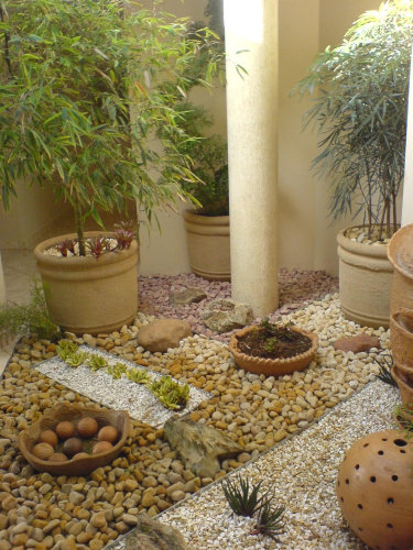 jardim (9)
