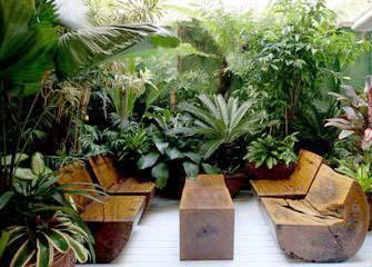 jardim de inverno ()
