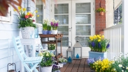 Verschiedene Frühlingsblumen in Töpfen auf einem Holzbalkon