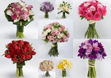 vcc-flores-3