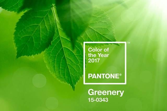vcc-greenery_pantone-2017-cor-11