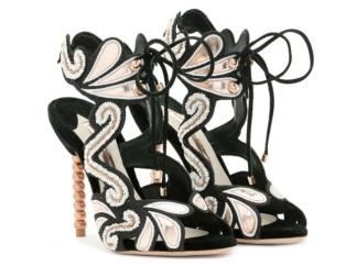 vcc-sapatos-exoticos-6